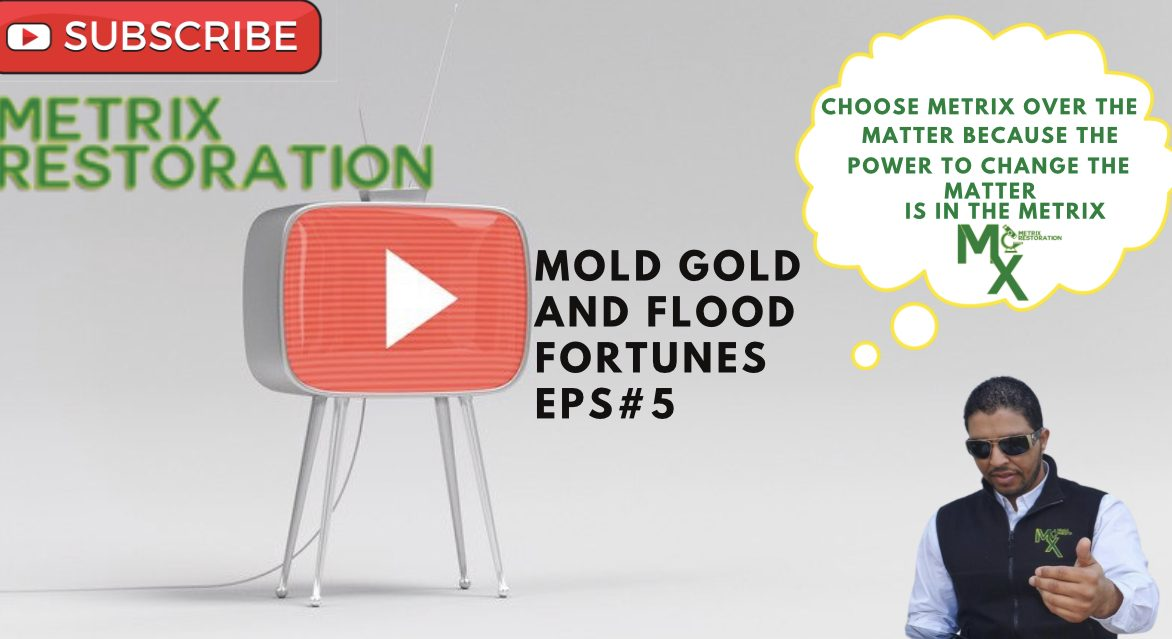 Flood Damage YouTube Thumbnail