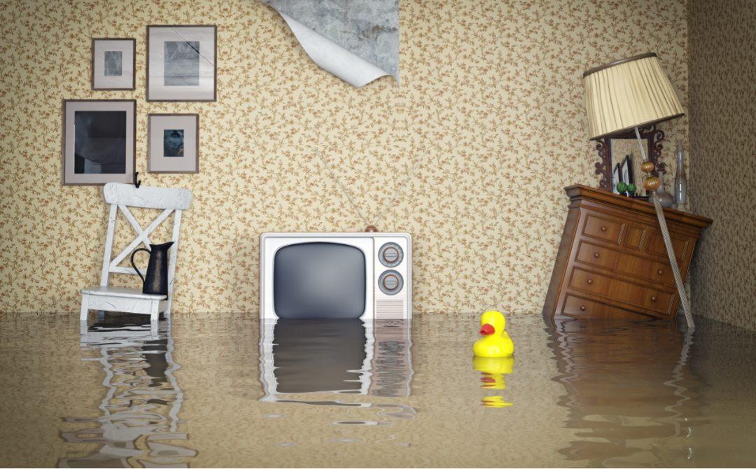 Flood & Water Damage