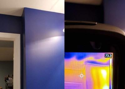 thermal image of basement flood